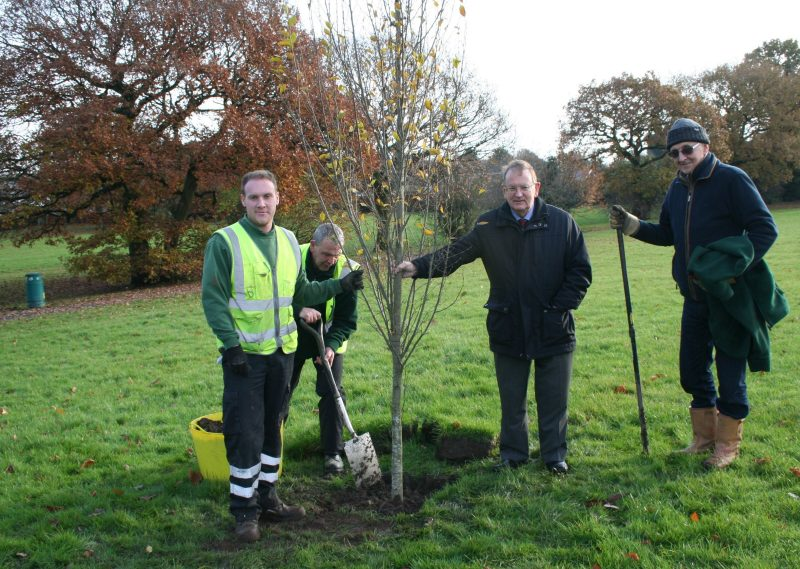 New Trees for Sindelfingen Park